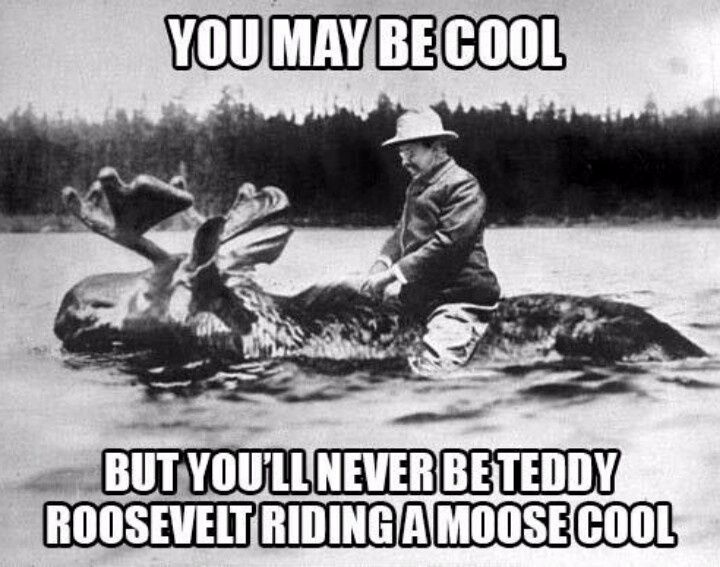 Teddy Roosevelt riding a moose = epitome of cool.